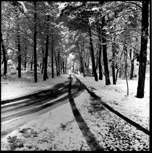 winter-path2